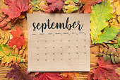 September calendar sheet with multiple autumn leaves of red, yellow and green color