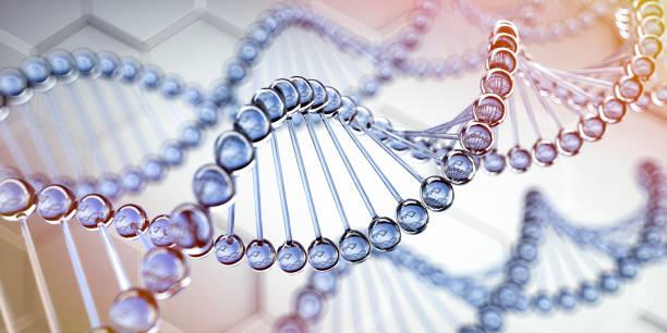 secuencia de adn, estructura del código de adn - medical 3d illustration - biotecnología fotografías e imágenes de stock