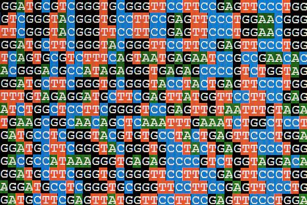 DNA-Sequenzen unaligned auf dem LCD-Bildschirm – Foto