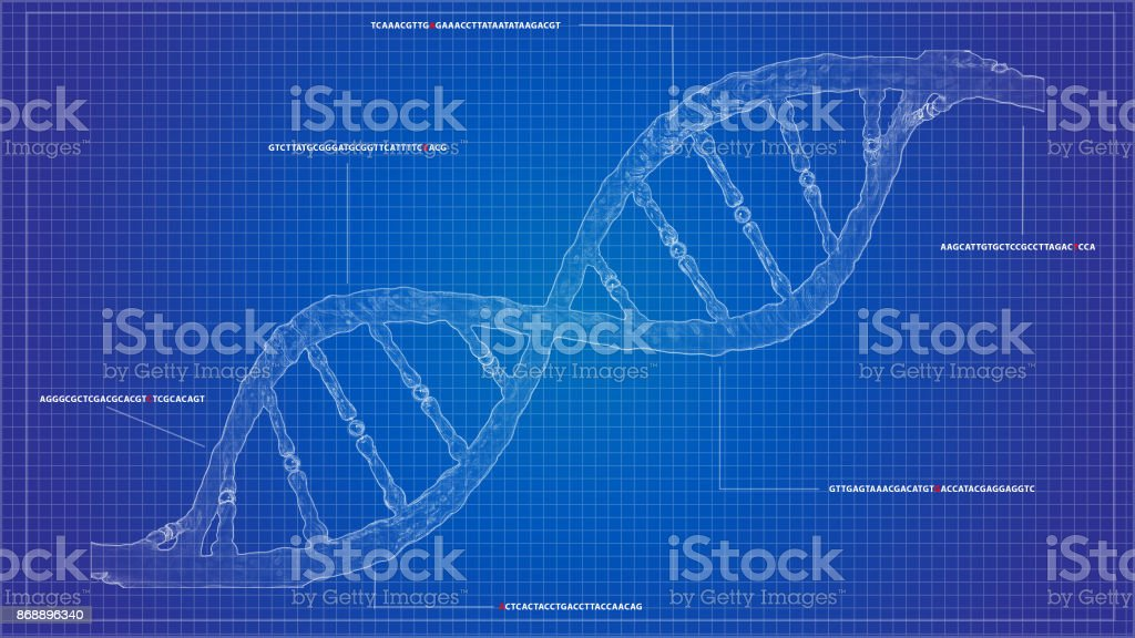 DNA sequencing blueprint RNA sequencing DNA computational models stock photo