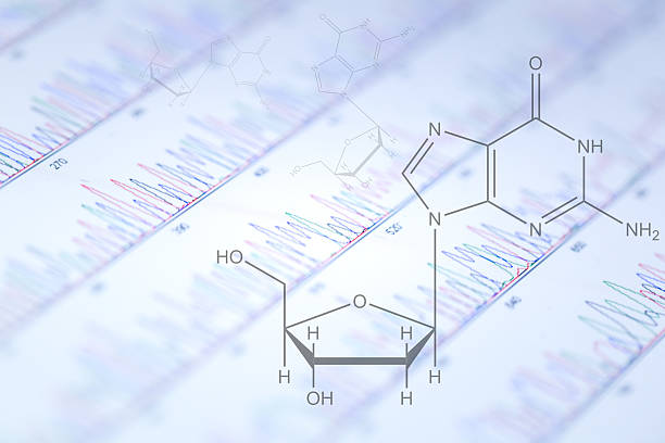 DNA sequencing peaks show on tablet DNA sequencing peaks show on touch pad  with chemical structures nucleotide stock pictures, royalty-free photos & images