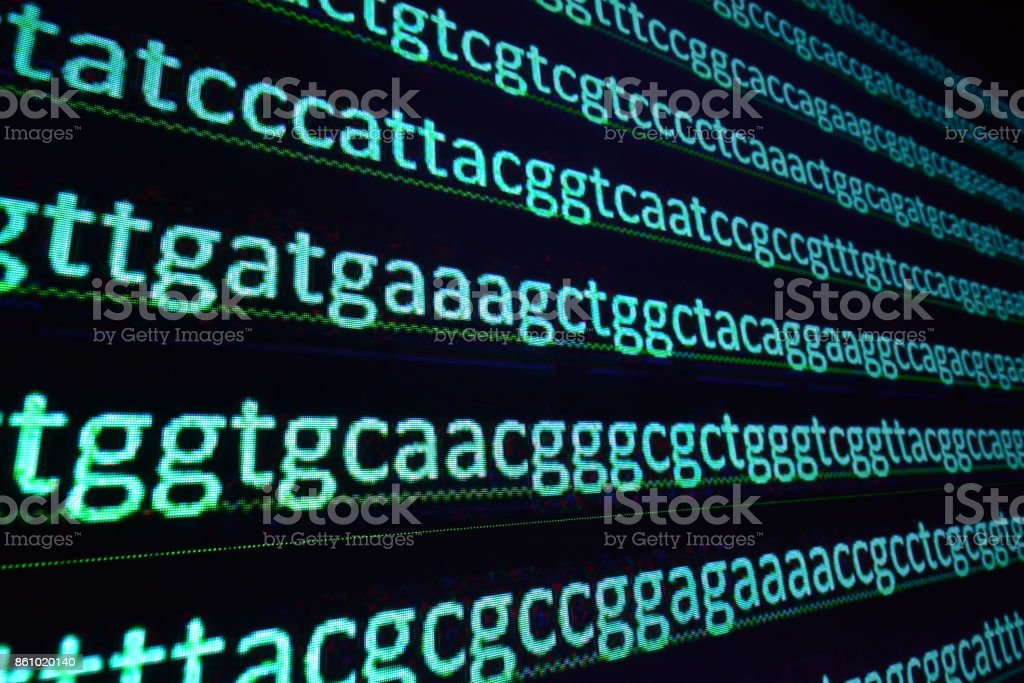 Sequencing the genome. stock photo