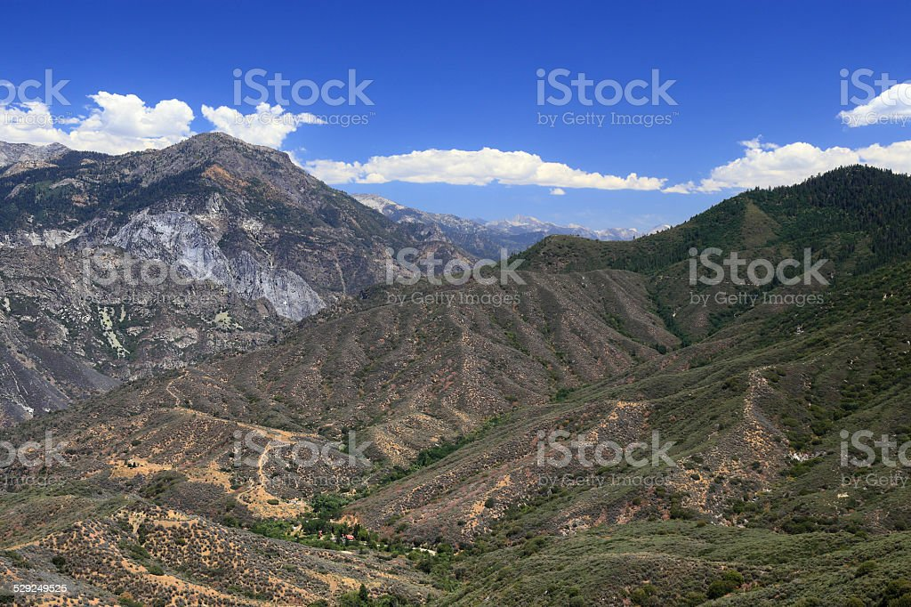 Sequoia National Forest stock photo