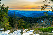 The Sequoia is one of nineteen National Forests in California. It takes its name from the giant sequoia, the world's largest tree. The Sequoia's landscape is as spectacular as its trees.