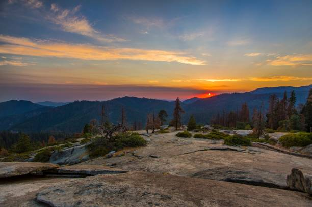 Sequoia National Park at Sunset stock photo