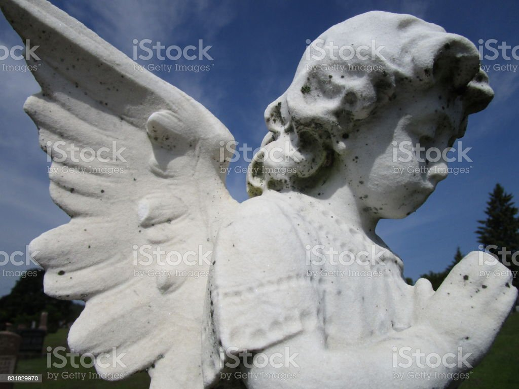 Seraph stock photo