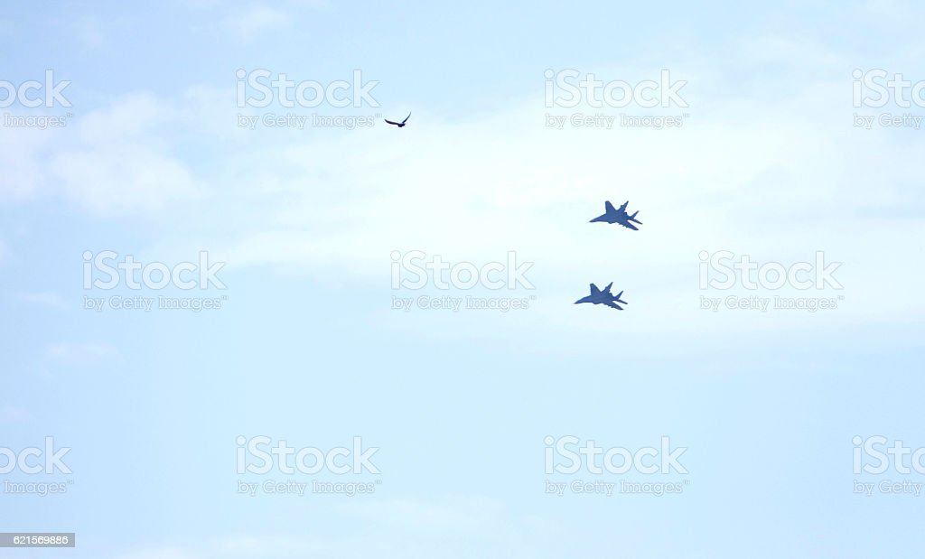 Serbian Air Force Mig-29 fighter bomber photo libre de droits