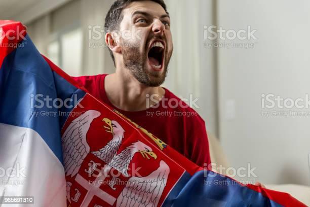 Serbian Fan Celebrating At Home - Fotografias de stock e mais imagens de Adulto