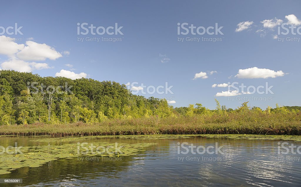 Serene Lake royalty-free stock photo
