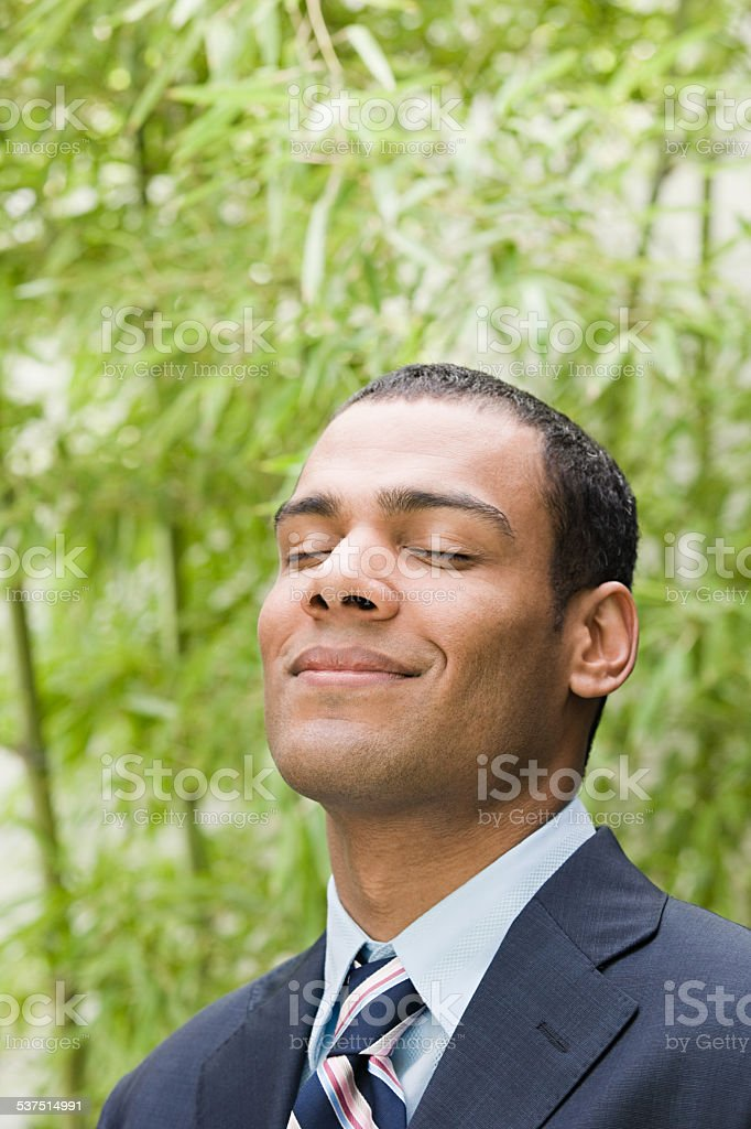 Serene looking businessman stock photo
