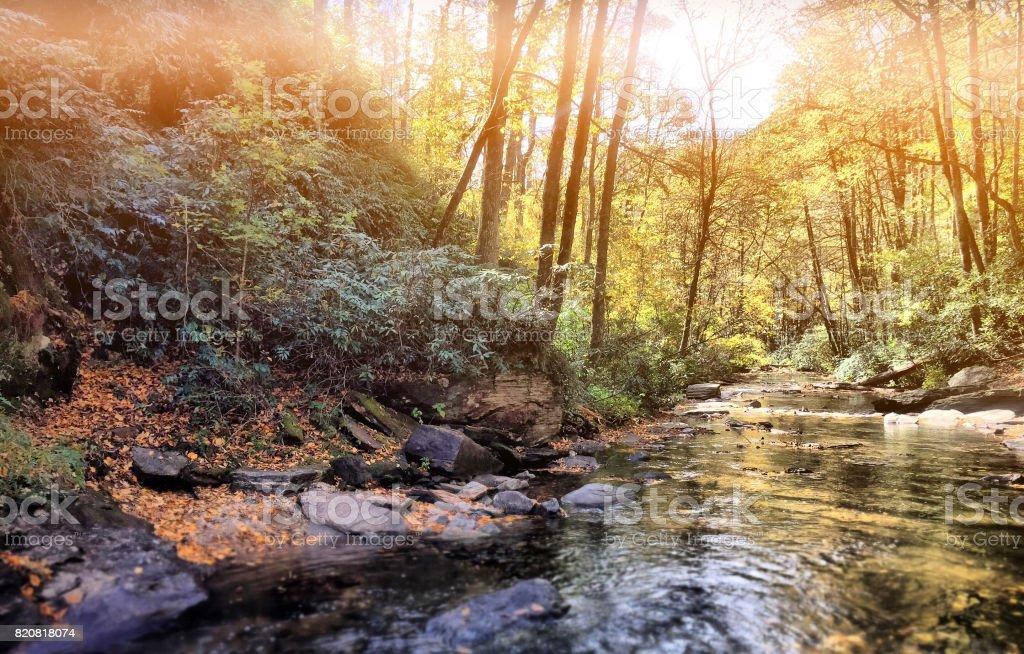 Serene Mountain River stock photo