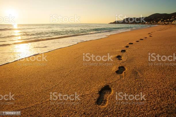 Photo of Serene Sunset on a beach