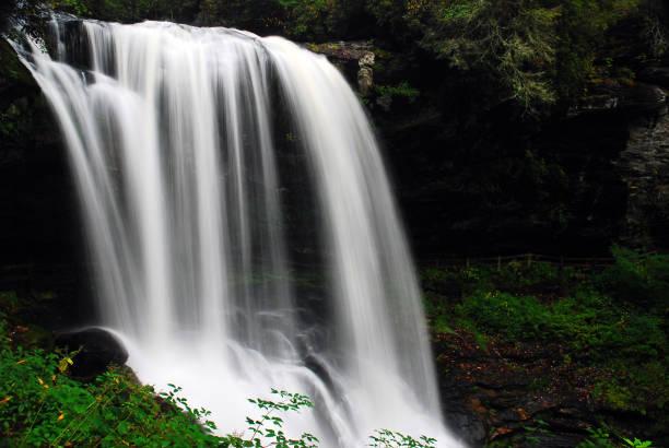 Heitere Wasserfälle in einem üppigen Wald – Foto