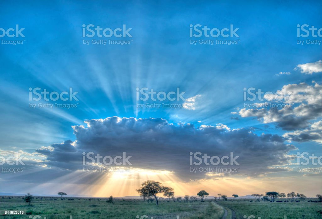 Serengeti National Park stock photo
