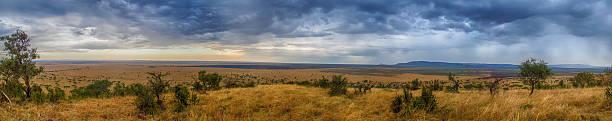 Serengeti Panorama stock photo