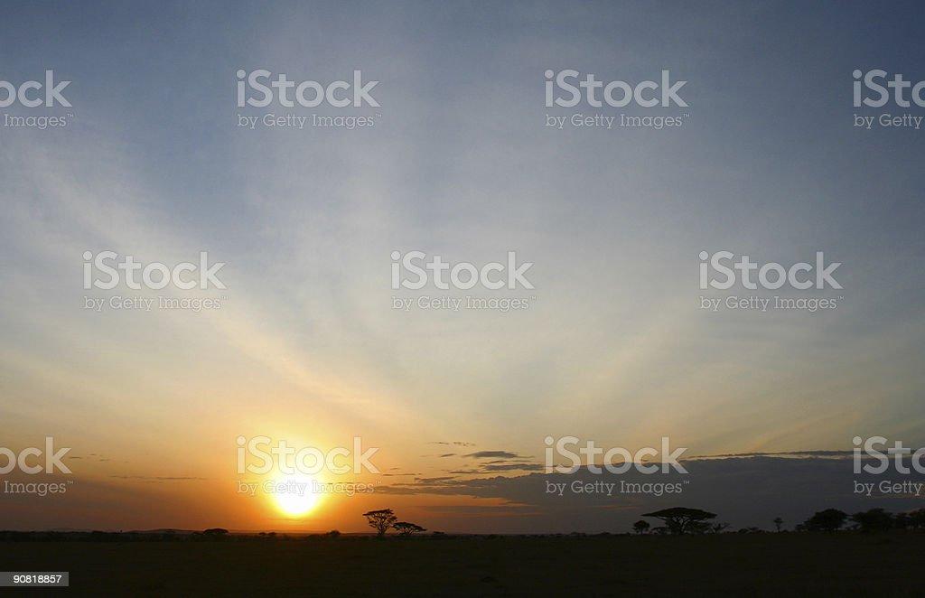 Serengeti Sunrise royalty-free stock photo