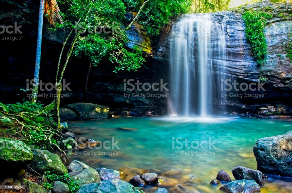 Serenity Falls in Buderim - Royalty-free Australia Stock Photo