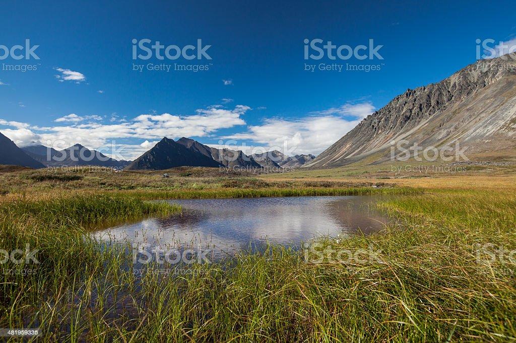 Serenity lake in tundra on Alaska stock photo