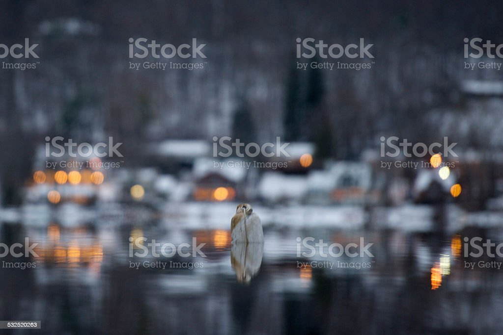 Serenity Lizenzfreies stock-foto