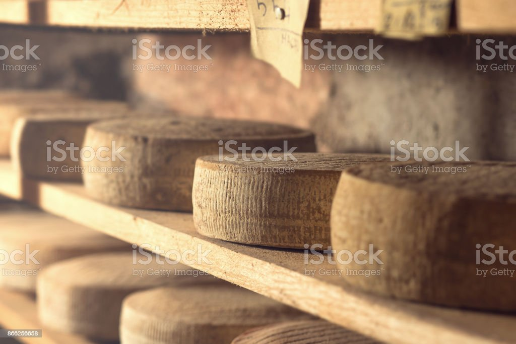 series of top quality bio natural cheese stock photo