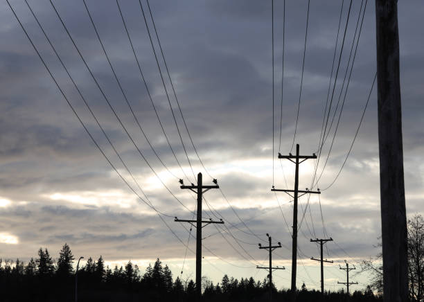Series of Utility Poles under Dramatic Sky in Winter stock photo