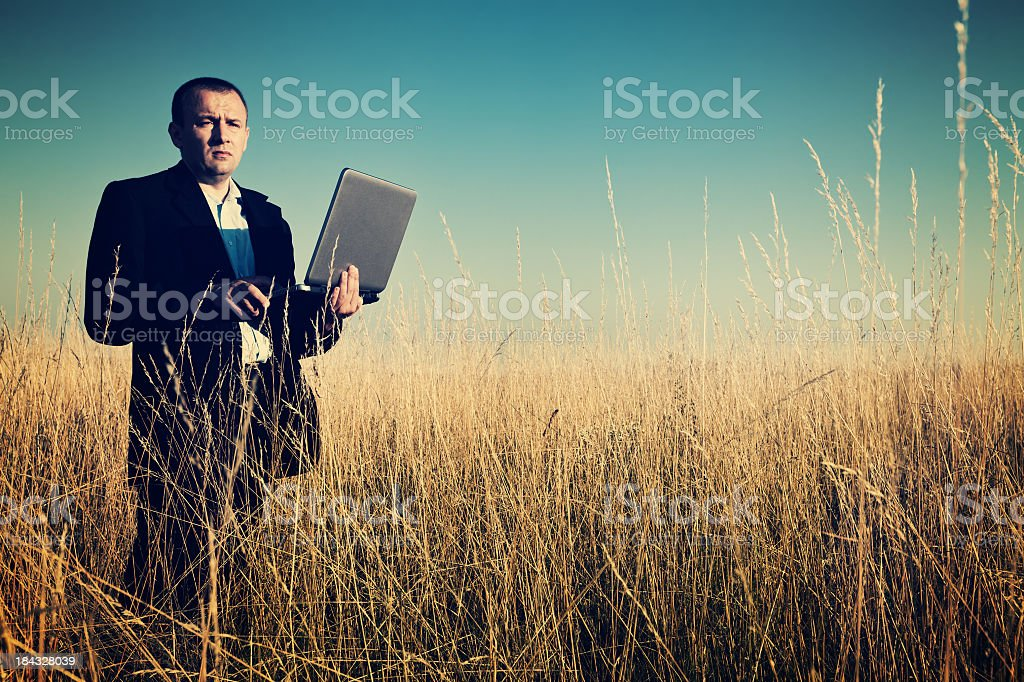 Serious business in a meadow royalty-free stock photo