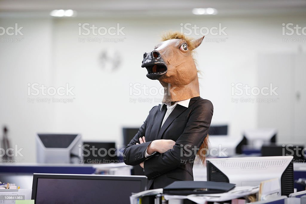 Serious Businesshorse stock photo