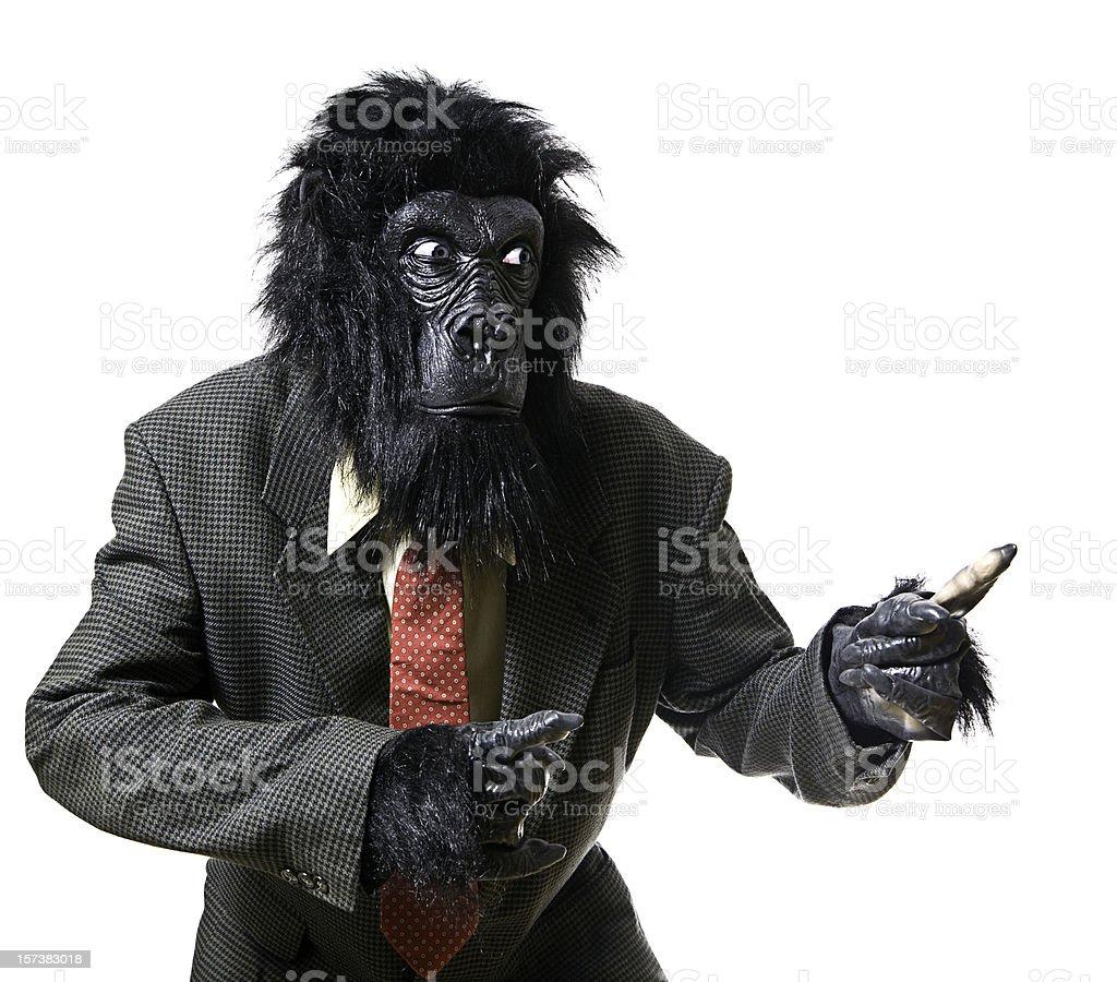 Serious Displeased Gorilla Businessman Portrait royalty-free stock photo