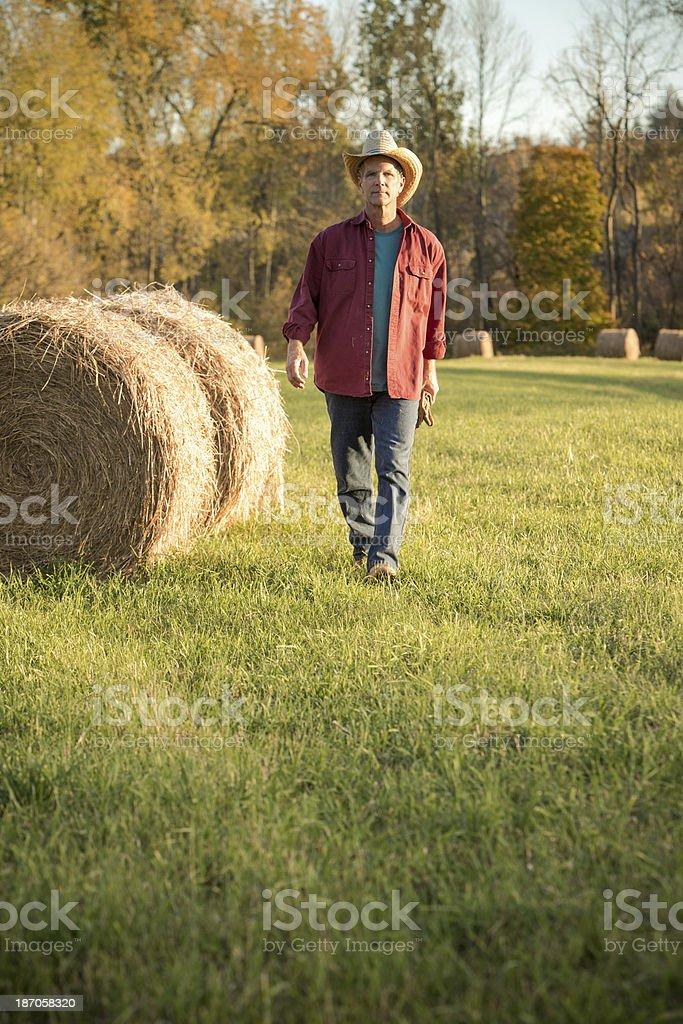Serious Farmer Walking Vertical royalty-free stock photo