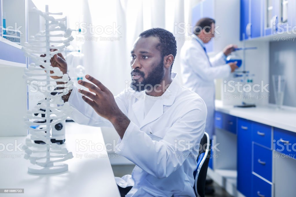 Serious intelligent geneticist looking at the gene model stock photo