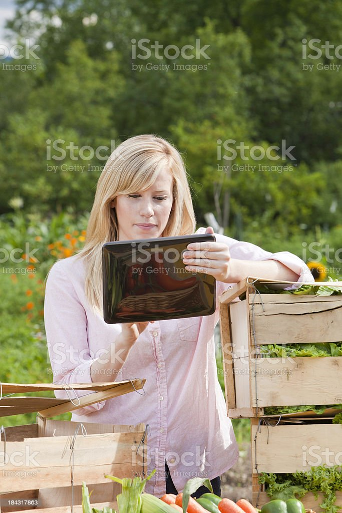 Serious Woman Managing Small Business on Digital Tablet royalty-free stock photo