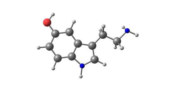 Serotonin molecular structure isolated on white – zdjęcie