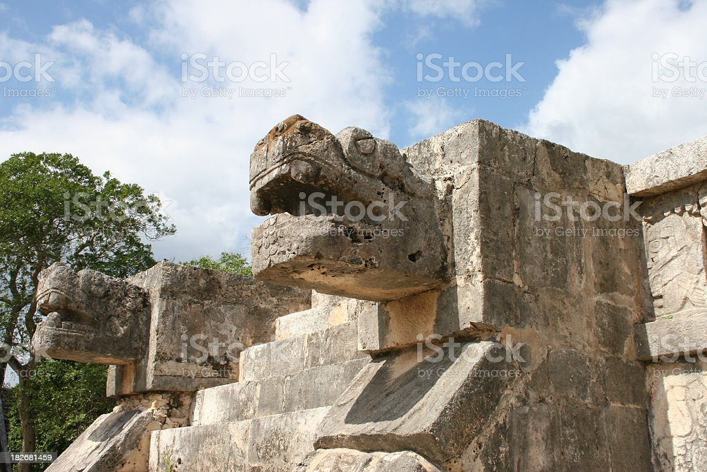 Serpent heads royalty-free stock photo