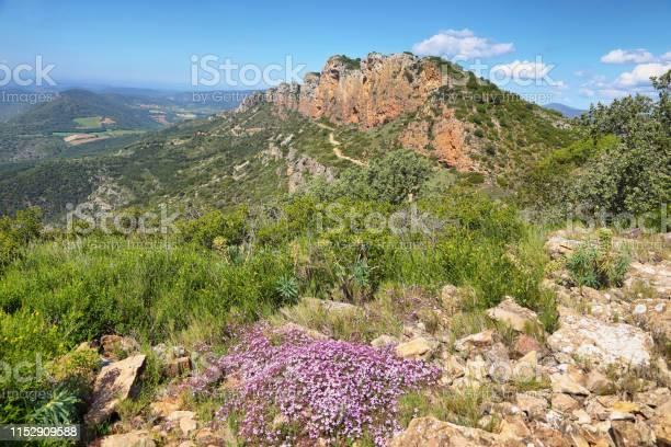 Serra de montroig in the lleida prepyrenees catalonia picture id1152909588?b=1&k=6&m=1152909588&s=612x612&h=24qlghcfnvvnjku8em6lurinkf gbn4p118crxcorda=
