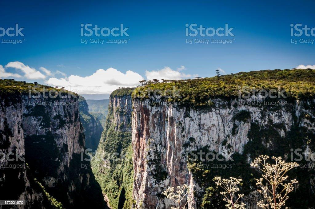 Serra Geral (Cânion do Itaimbezinho) - foto de stock