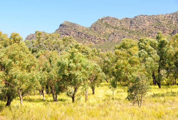 Serra Range - Dunkeld stock photo