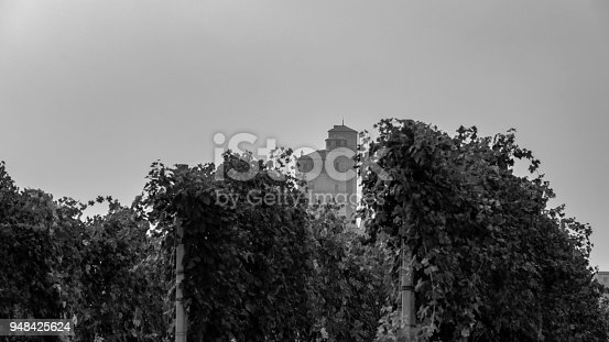 948424058istockphoto Serralunga d'Alba seen among the vineyards in the Langhe hill area, Cuneo province Piedmont, northern Italy 948425624