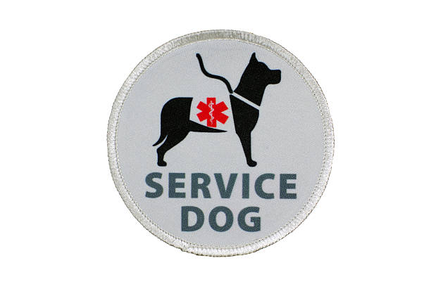 Service Dog for Disabled Patch stock photo