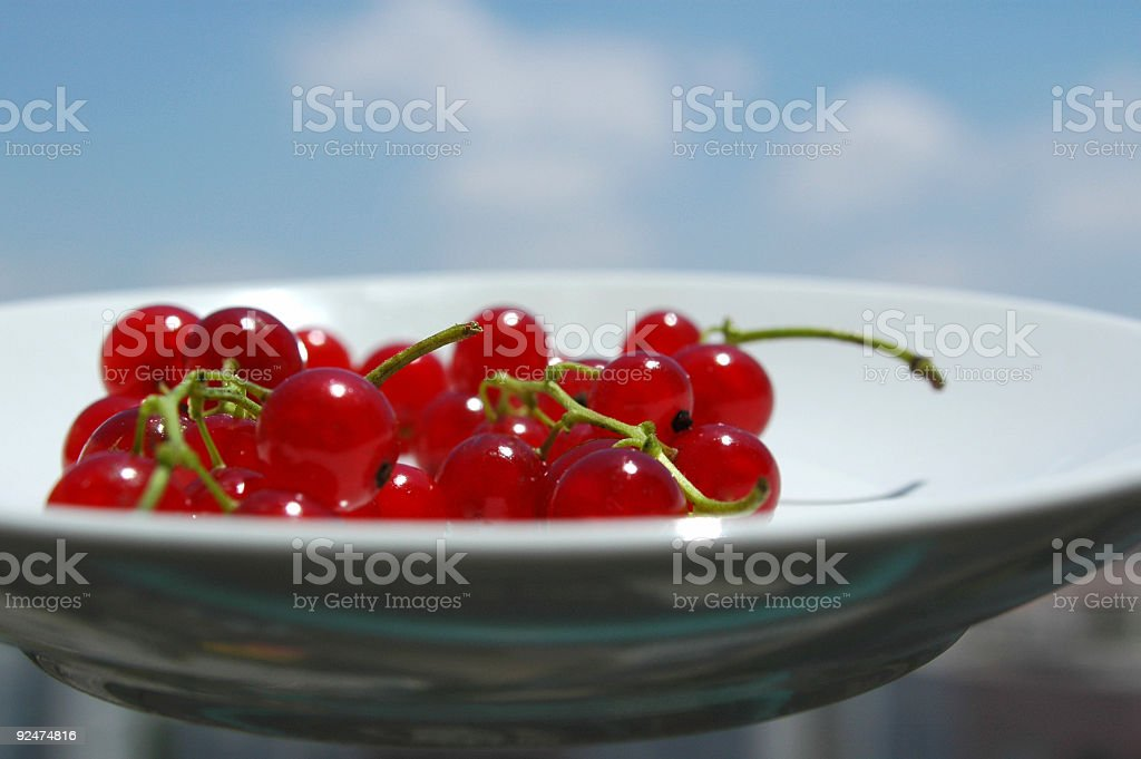 Serving Currant royalty-free stock photo