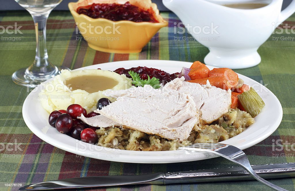 Serving of turkey, stuffing, potatoes, vegetables, and cranberrys. royalty-free stock photo