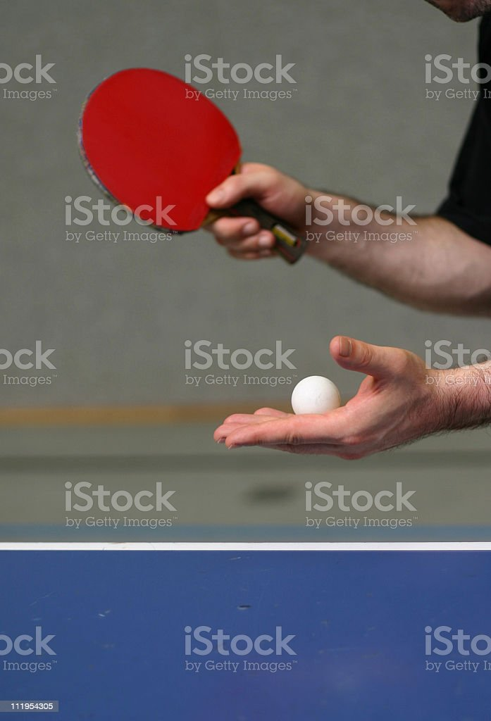 Serving the ball royalty-free stock photo