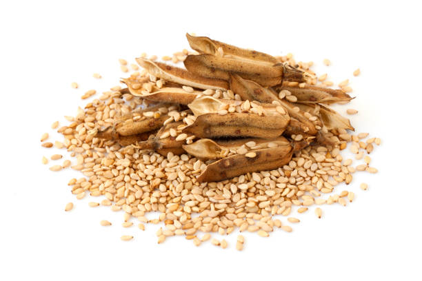 sesame - sesame stock photos and pictures