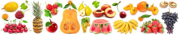 eingestellten obst und gemüse - melonenbirne stock-fotos und bilder