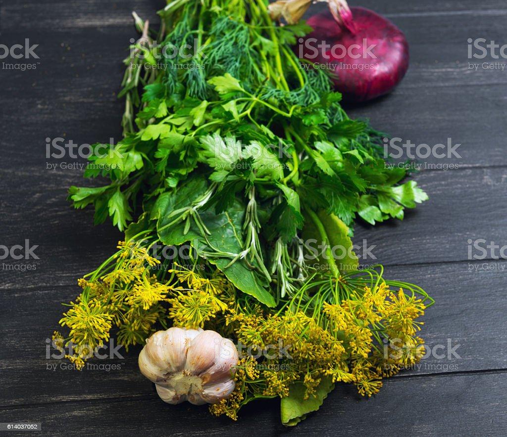 Set garden herbs for pickling stock photo