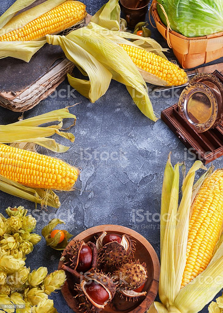 Set of autumn harvest top view stock photo