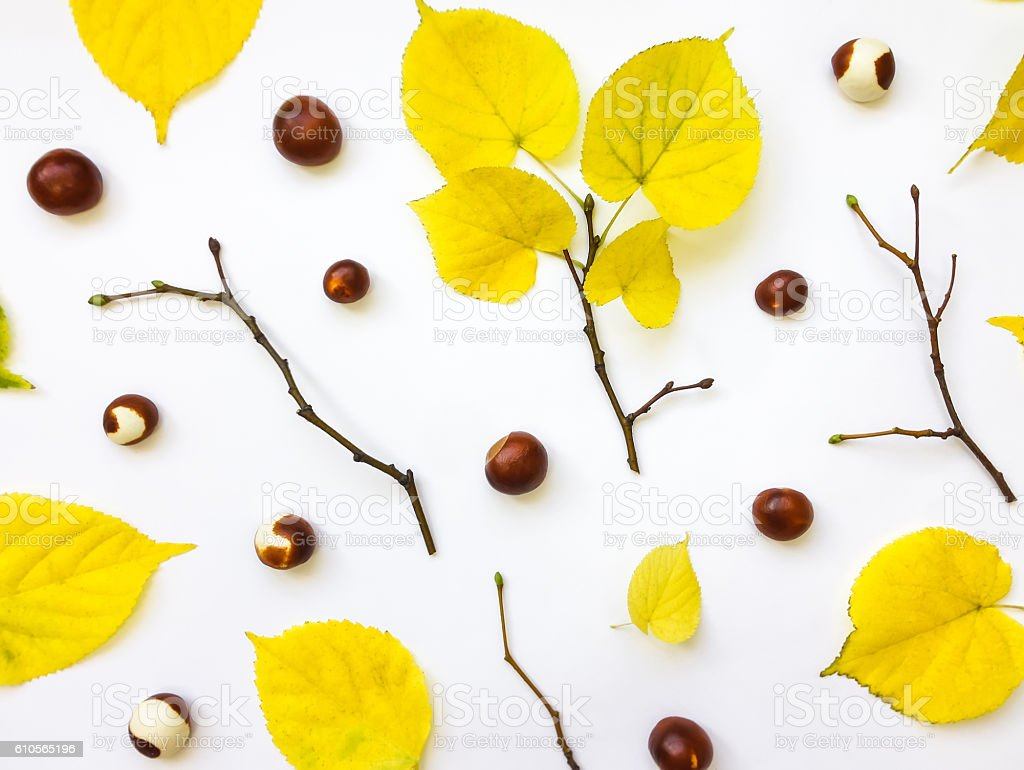 Set of autumn leaves, chestnuts and branches. Top view stock photo