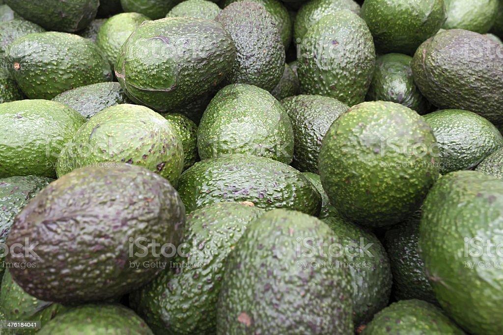 Set of avocados royalty-free stock photo