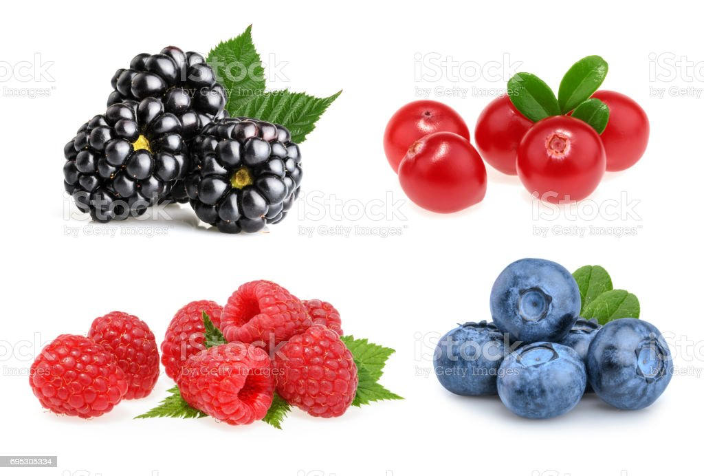 Set of beautiful fruits ( blackberries, cranberries, raspberries, blueberries) stock photo