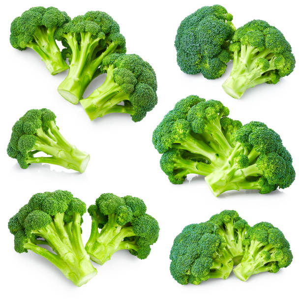 Set of broccoli stock photo