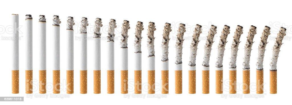 Set of Cigarettes During Different Stages of Burn - foto de acervo